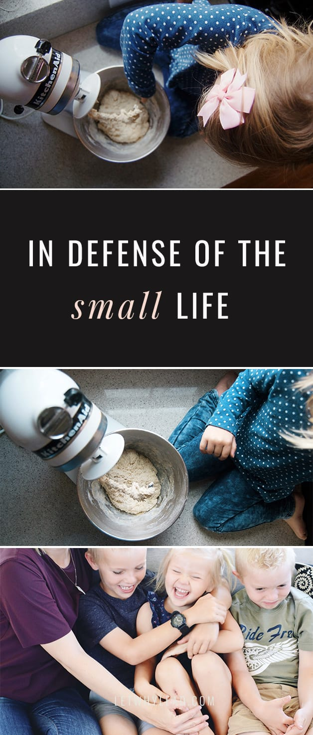 For many of us in the trenches of raising children and earning a living, life has never felt so small. But small doesn't mean unimportant—In Defense of the Small Life